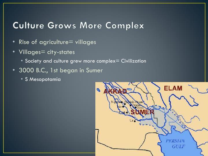 Culture Grows More Complex