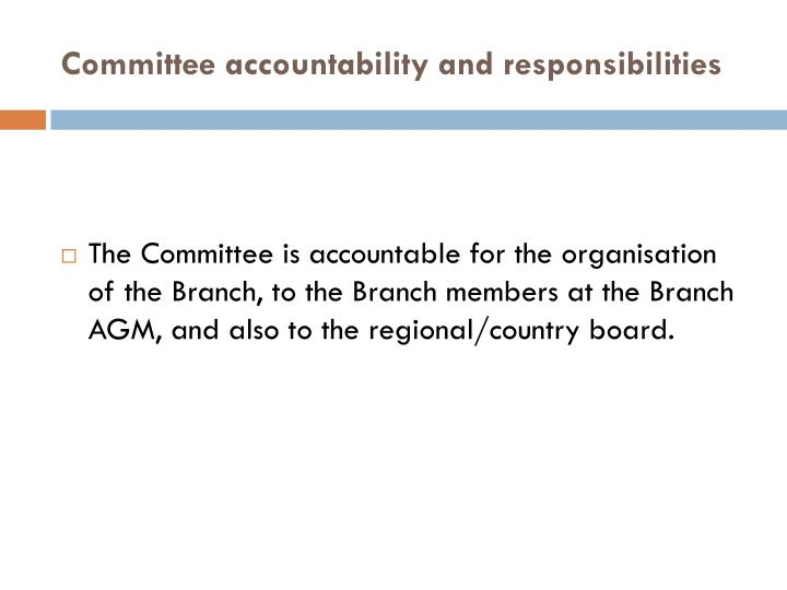 Committee accountability and responsibilities