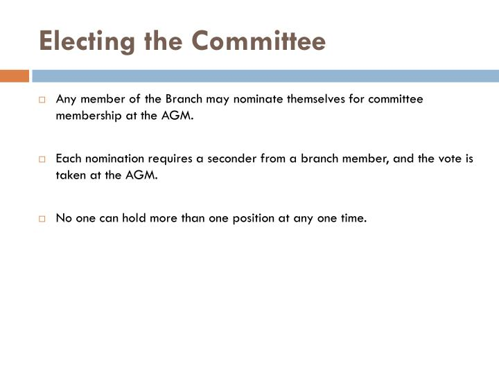 Electing the Committee