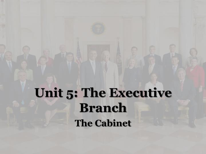 unit 5 the executive branch