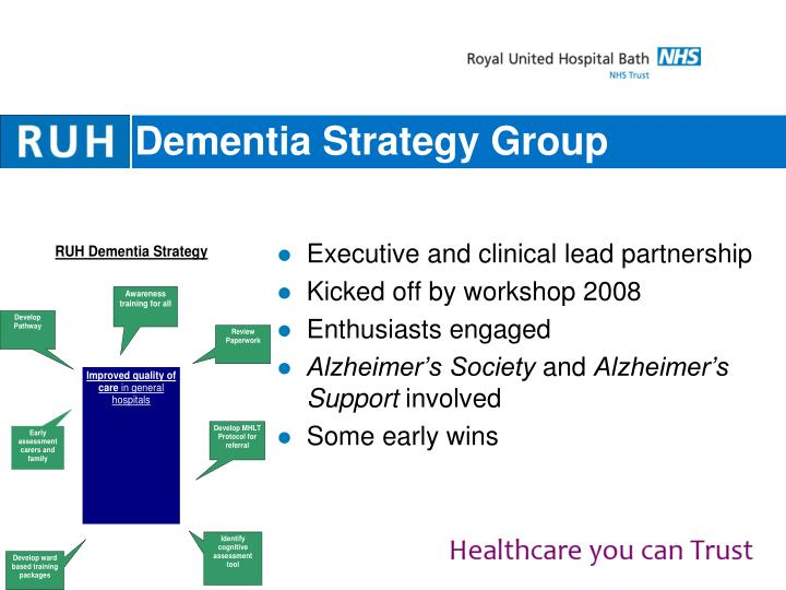 Dementia Strategy Group