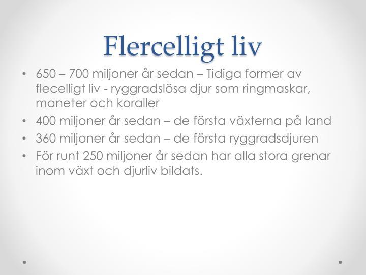 Flercelligt liv