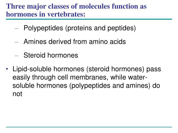 Three major classes of molecules function as hormones in vertebrates: