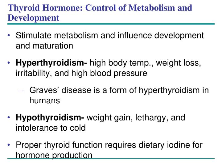 Thyroid Hormone: Control of Metabolism and Development