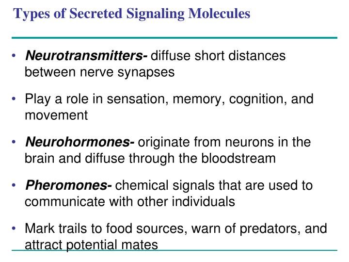 Types of Secreted Signaling Molecules