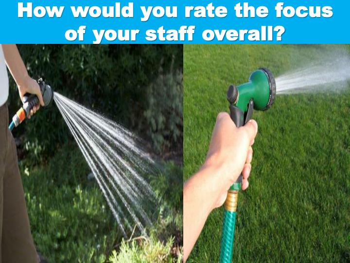 How would you rate the focus of your staff overall?