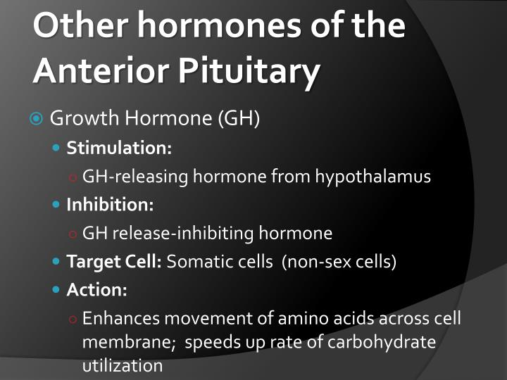 Other hormones of the Anterior Pituitary