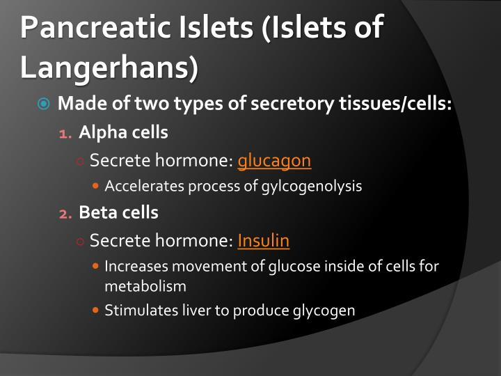 Pancreatic Islets (Islets of