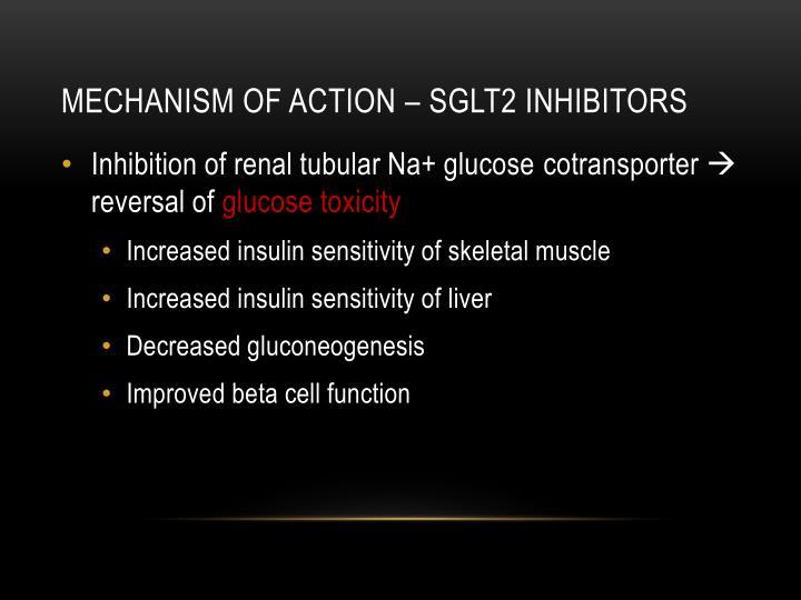 Mechanism of action – SGLT2 inhibitors