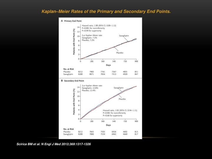 Kaplan–Meier Rates of the Primary and Secondary End Points.