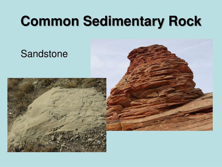 Common Sedimentary Rock