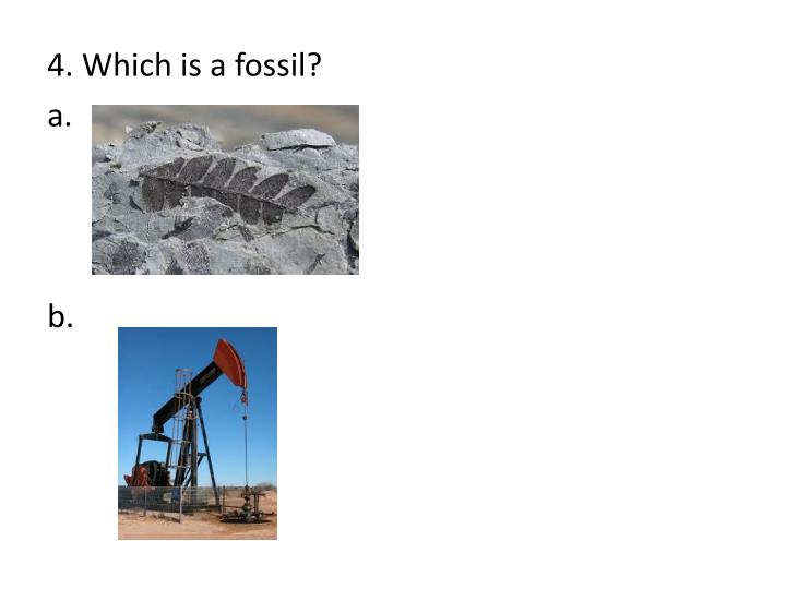 4. Which is a fossil?