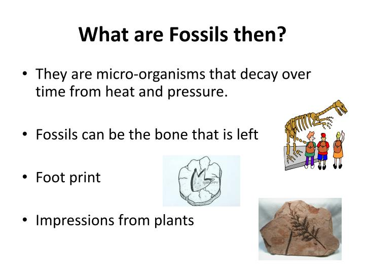 What are Fossils then?