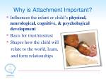 why is attachment important