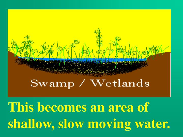 This becomes an area of shallow, slow moving water.