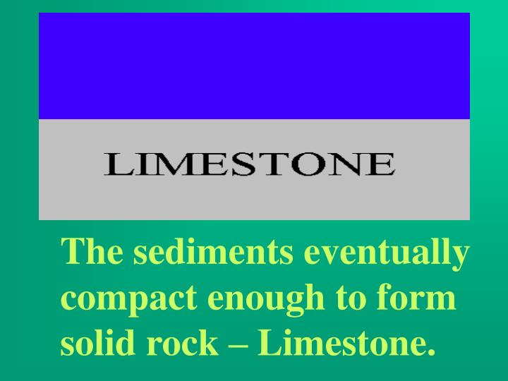 The sediments eventually compact enough to form solid rock – Limestone.