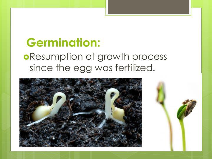 Germination: