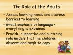 the role of the adults1