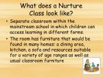 what does a nurture class look like
