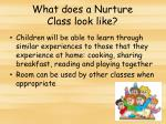 what does a nurture class look like1