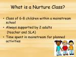 what is a nurture class1