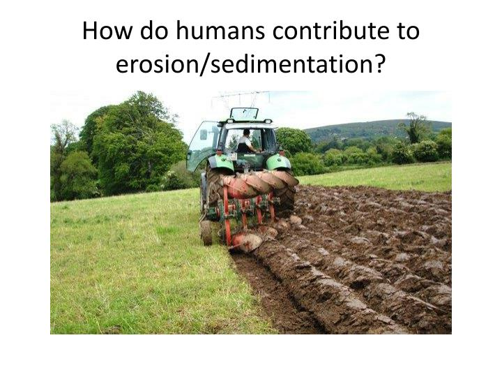 How do humans contribute to erosion/sedimentation?