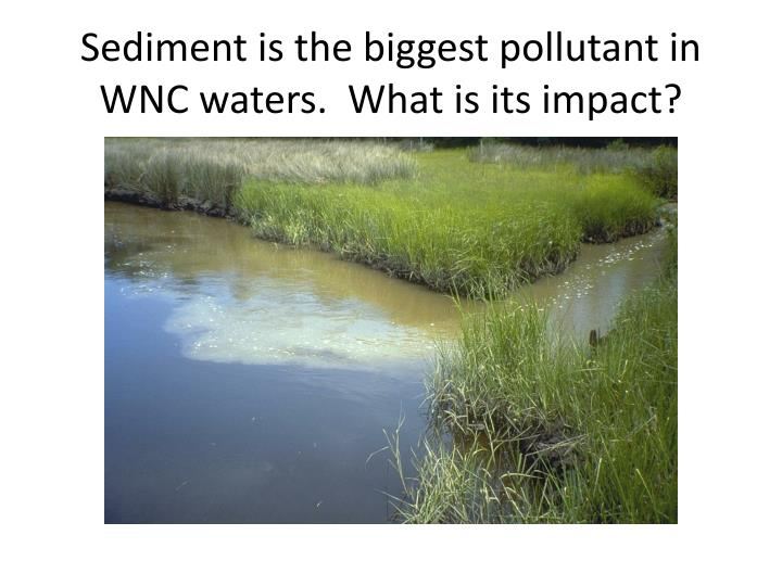 Sediment is the biggest pollutant in WNC waters.  What is its impact?