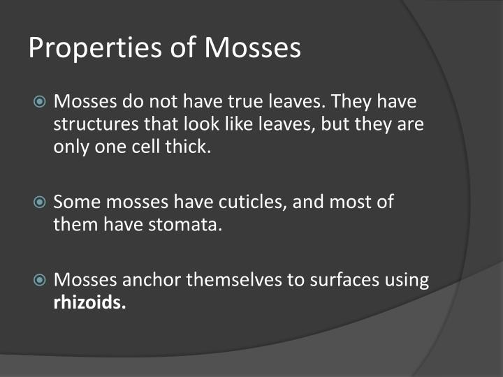 Properties of Mosses