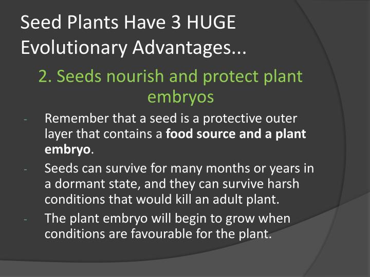 Seed Plants Have 3 HUGE Evolutionary Advantages...