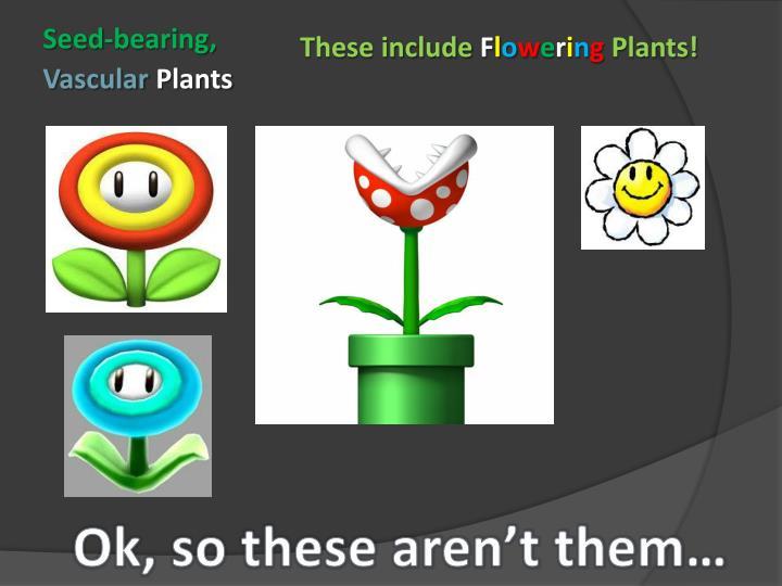 Seed-bearing,
