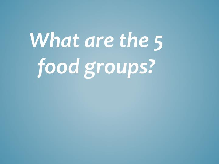 What are the 5 food groups?