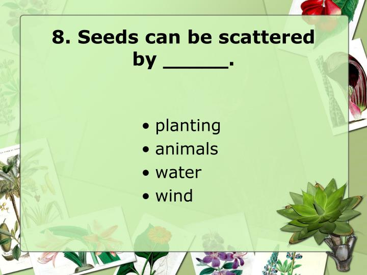 8. Seeds can be scattered