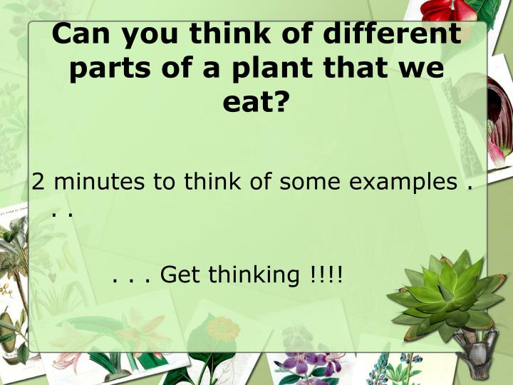 Can you think of different parts of a plant that we eat?