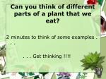 can you think of different parts of a plant that we eat