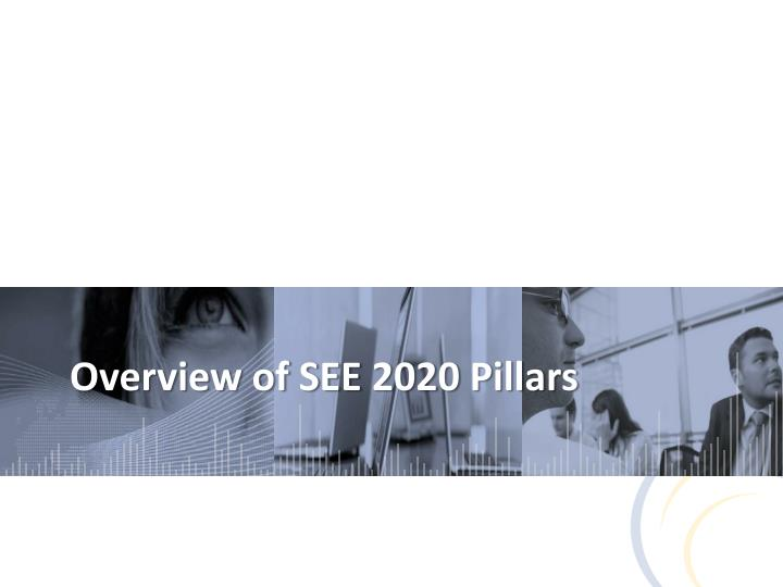 Overview of SEE 2020 Pillars