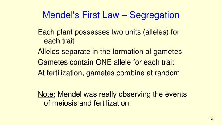 Mendel's First Law – Segregation