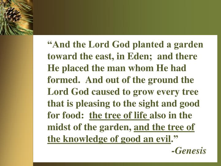 """""""And the Lord God planted a garden toward the east, in Eden;  and there He placed the man whom He had formed.  And out of the ground the Lord God caused to grow every tree that is pleasing to the sight and good for food:"""