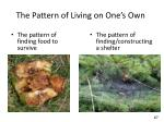 the pattern of living on one s own
