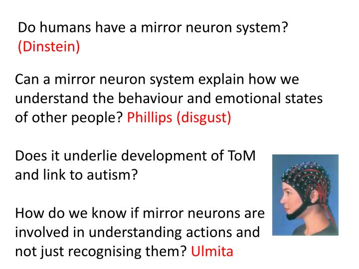 Do humans have a mirror neuron system?