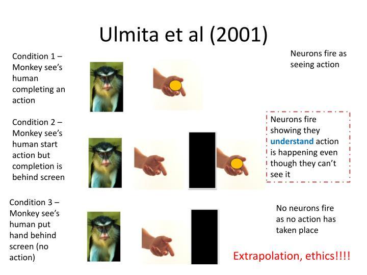 Ulmita et al (2001)