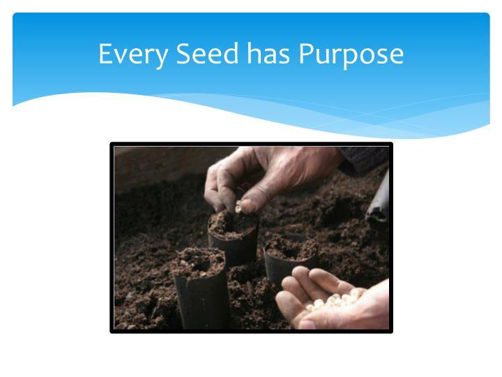 Every Seed has Purpose