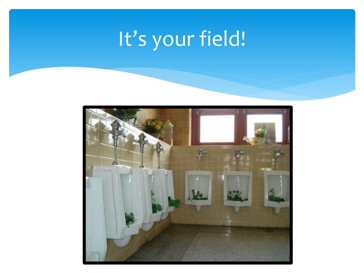 It's your field!