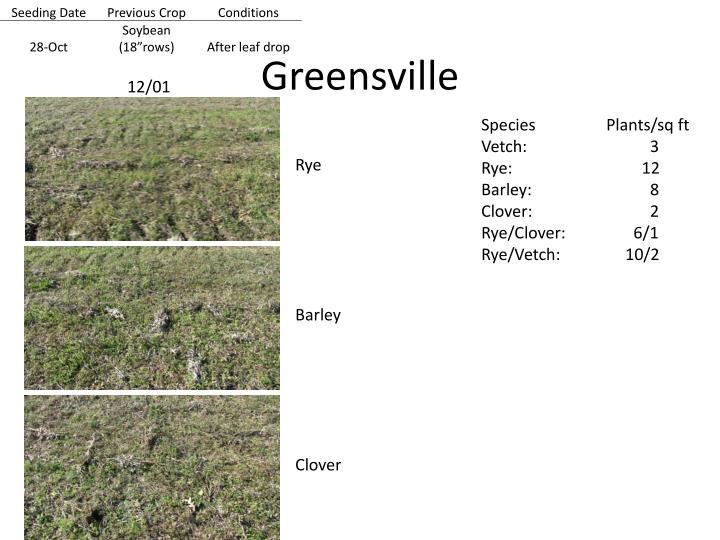 Greensville