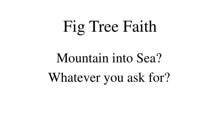 Fig Tree Faith