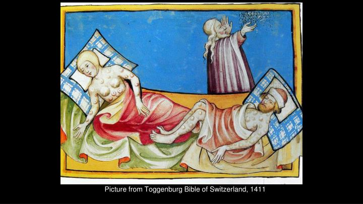 Picture from Toggenburg Bible of Switzerland, 1411