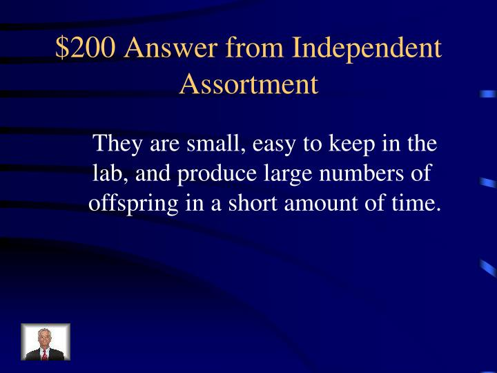$200 Answer from Independent Assortment