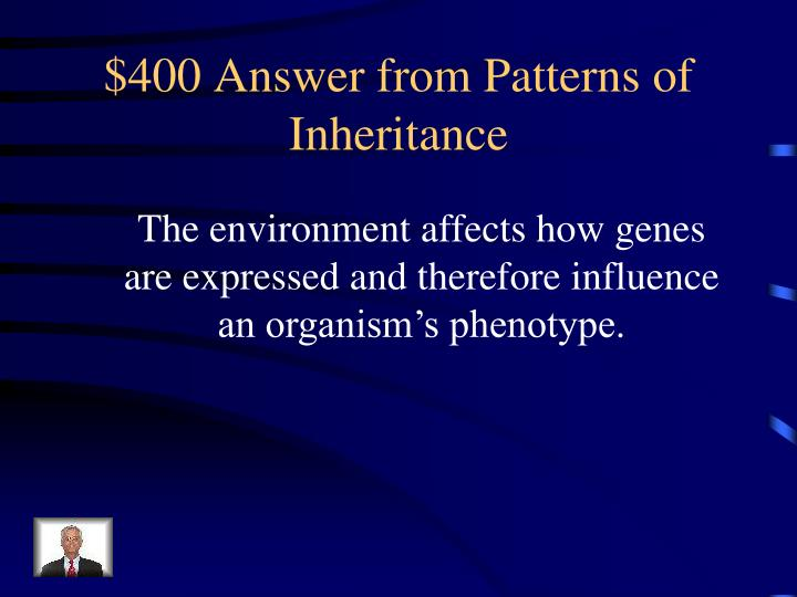 $400 Answer from Patterns of Inheritance