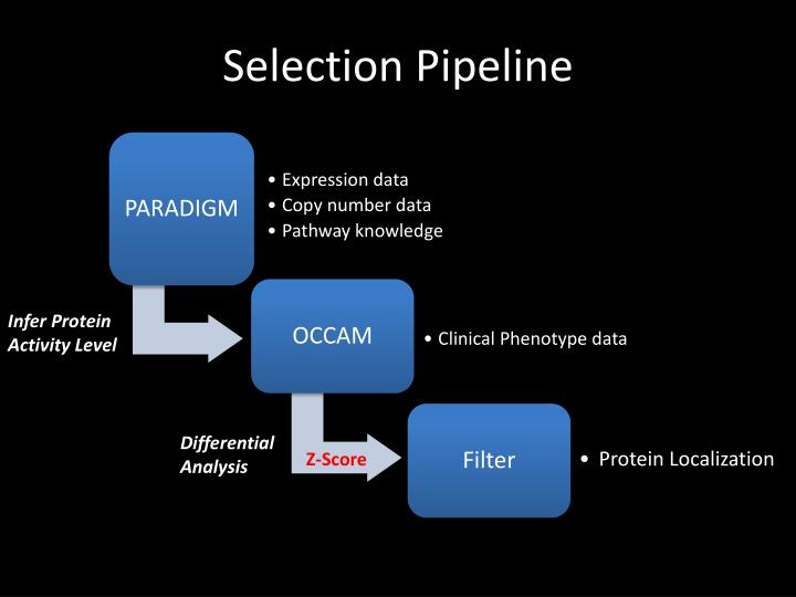 Selection Pipeline