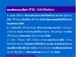 file attributes1