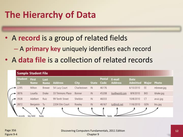 The Hierarchy of Data